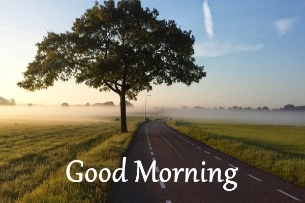 amazing good morning images hd