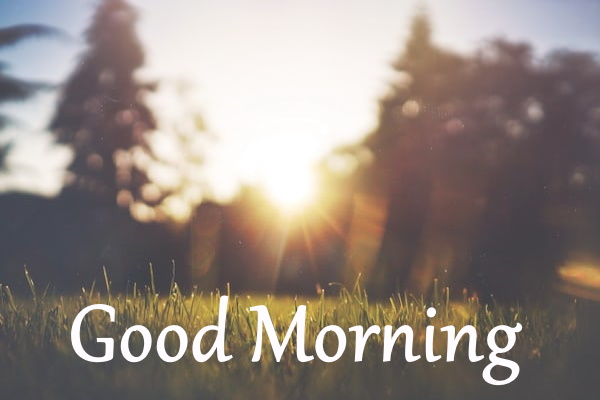 new good morning images free download for whatsapp hd download