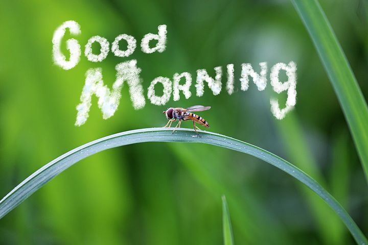 beautiful morning images